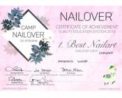 Best-Nailart-Nailover 2019 1. Platz Gelmalerei – Feine Linien